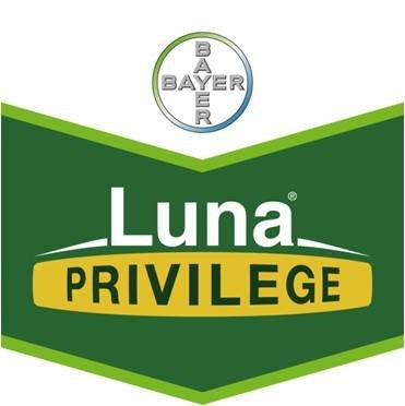 Luna Privilege (1 ltr)